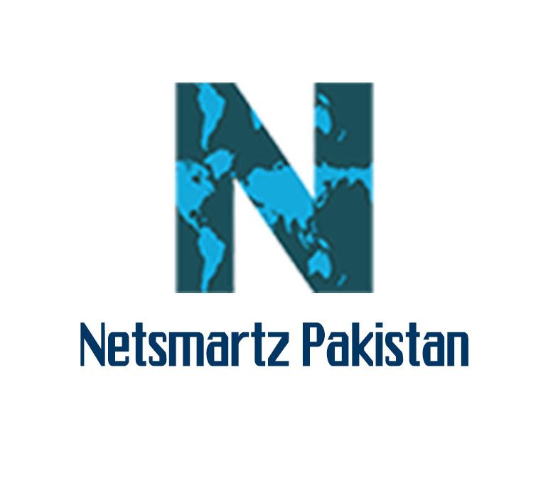 Netsmartz SEO and Digital Marketing Solutions